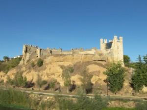 Castillo-Valencia_de_Don_Juan-Castillo_de_Coyanza Turisleon