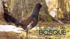 El secreto del bosque 31Mzo2017 3