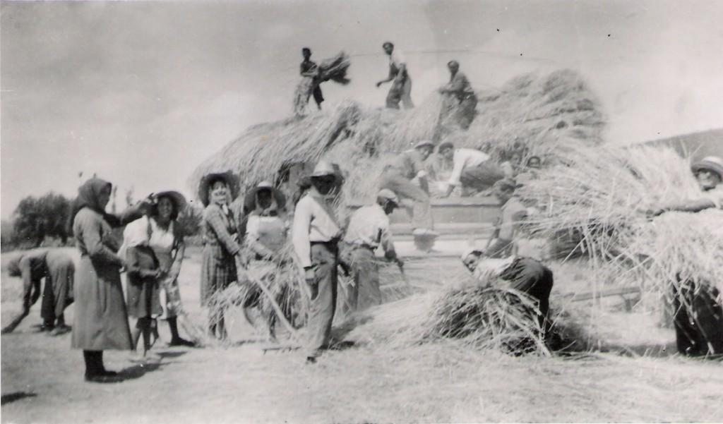Trill en Cibrera Castrillo de los Polvazares 1948 Blog Castrillo