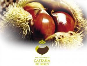 castana_bierzo