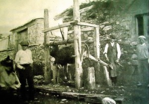 rIAÑO 1897  Gadow