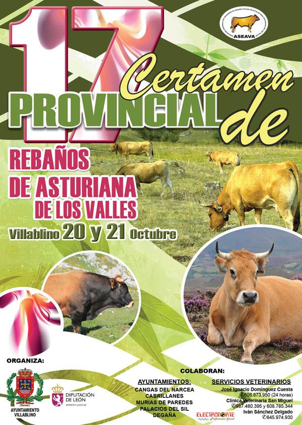 rebanos_asturiana